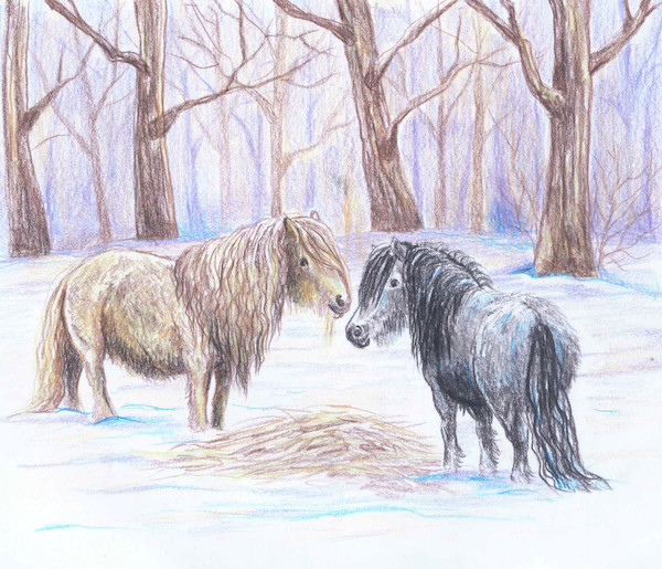 Peipi ja Nerida